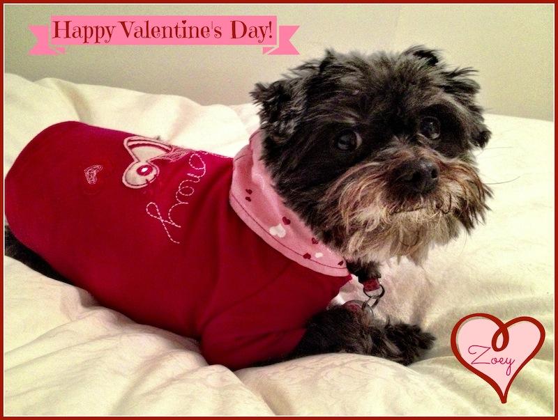 Zoey valentine
