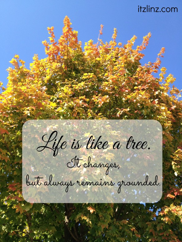 life is like a tree