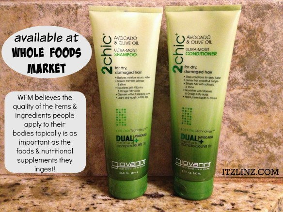 2chic shampoo conditioner