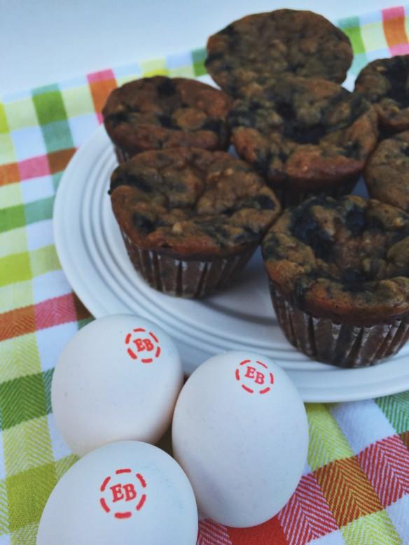 ebeggs flourless muffins