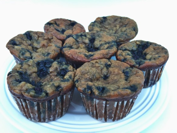 flourless pb blueberry muffins