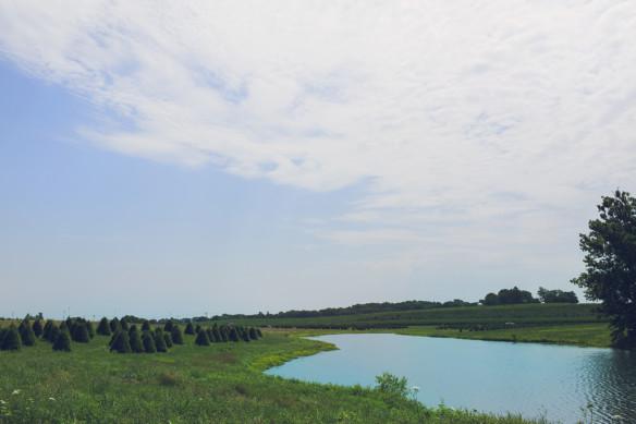 eckerts lake